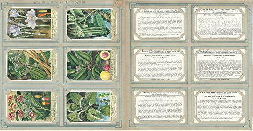 (Liebig, Set 6 Cards, F1567F (French), 1953, Natural History of Spices, Plants)