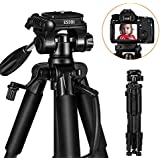 """Camera Tripod - ESDDI 55'' /140cmTravel Lightweight Portable Tripod for Smart phone and Camera DSLR Canon Nikon Sony Samsung Olympus with Carrying Bag Maximum Load Capacity 11Lbs/5Kg and 1/4"""" Mounting"""