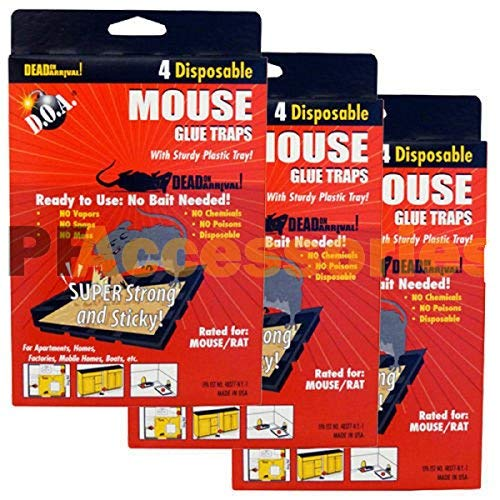 Pack of 12 d.o.a. Disposable Glue Traps for Mice Rats Mouse Super Stick Tray Lot Each Trap Size 4.5