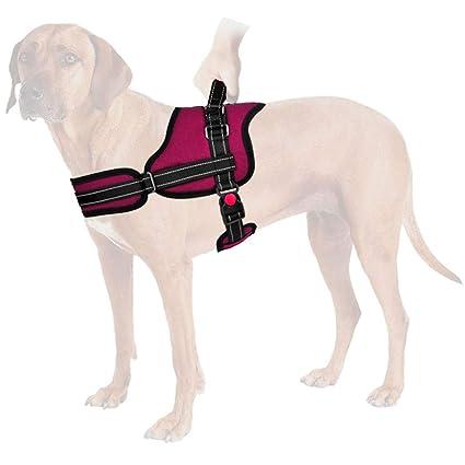 Chaleco para perro sin tirones, ajustable, correa para el pecho ...