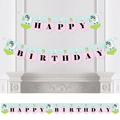 Whole Llama Fun - Bunting Banner - Birthday Party Decorations - Happy Birthday ()