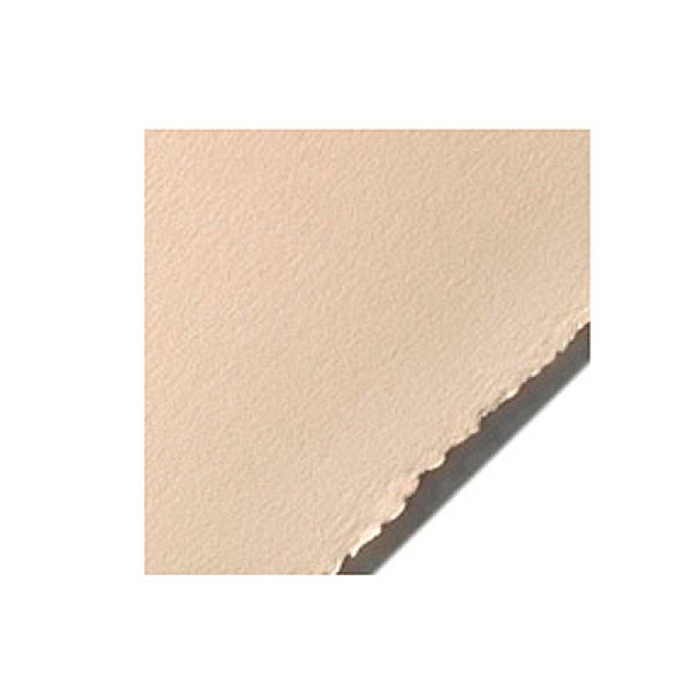 Stonehenge Paper 22 X 30 Fawn Pk Of 25 by Stonehenge