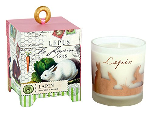 Michel Design Works Gift Boxed Soy Wax Candle, 6.5-Ounce, Lapin