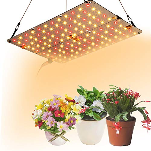 Dommia LED Grow Light, 20w DIY Plant Lights with Red & Warm White Spectrum Grow Lamp for Hydroponic, Seedling, Succulents, Veg and Flower (20W GL)