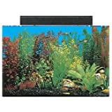 SeaClear 20 gal Acrylic Aquarium Combo Set, 24 by 13 by 16'', Clear