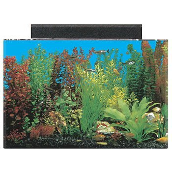 SeaClear 20 gal Acrylic Aquarium Combo Set, 24 by 13 by 16', Black