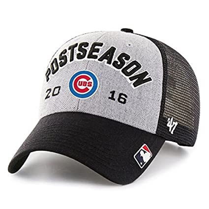 b15794b3f01d0 Amazon.com   Chicago Cubs  47 2016 NL Central Division Champions Locker Room  Adjustable Hat   Sports   Outdoors