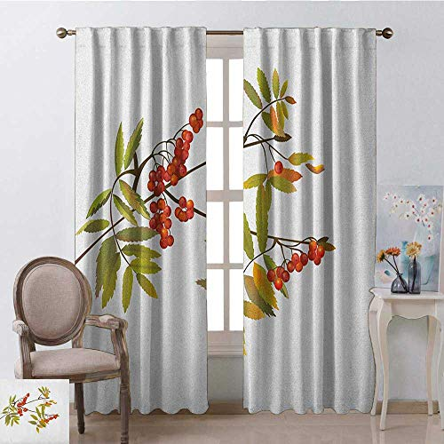 youpinnong Rowan, Curtains Blackout, Fresh Organic Ashberry Tree Botanical Natural Gardening Plants Illustration, Curtains Kitchen Window Set, W72 x L108 Inch, Green Red Brown ()