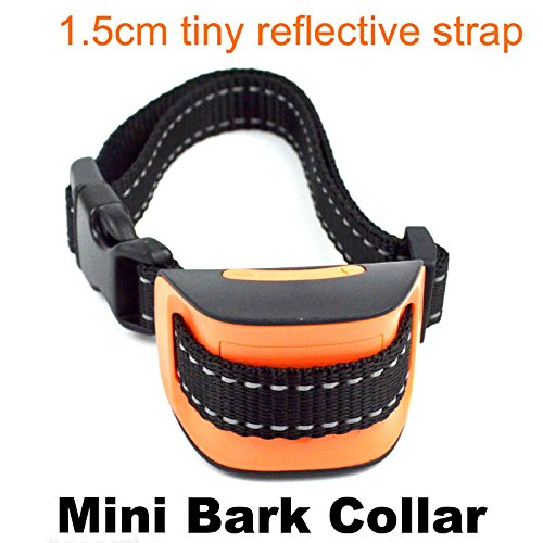 Toy Dog Bark Collar