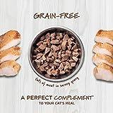 Instinct Healthy Cravings Grain Free Real Rabbit