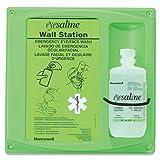 Honeywell 32-000460-0000 Fend-All 16 Ounce Single Bottle Eye Saline Sperian Sterile Eye Wash Wall Station, English, 15.34 fl. oz, Plastic, 1 x 1 x 1