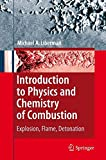 Introduction to Physics and Chemistry of Combustion: Explosion, Flame, Detonation