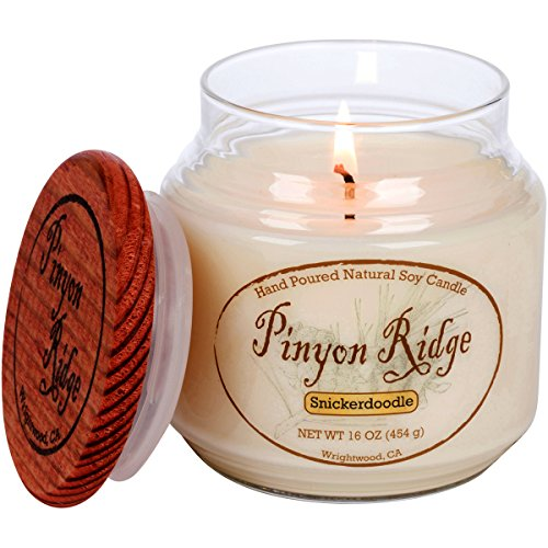 authentic-hand-poured-natural-soy-candle-16oz-snickerdoodle-100-hour-burn-time-crafted-in-the-usa-by