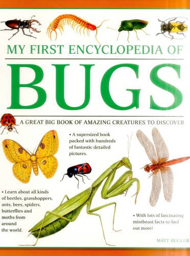 My First Encylopedia of Bugs: A First Encyclopedia With Supersize Pictures