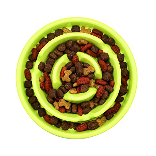 Slow Feeder Dog Bowl - Healthy and Happy Feeder, Puzzle Fun Feeder, Anti-Choke Dog Bowl. (Green) by PatPaw