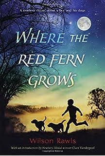 The Secret Garden: Frances Hodgson Burnett, S R P, Rick Ellis