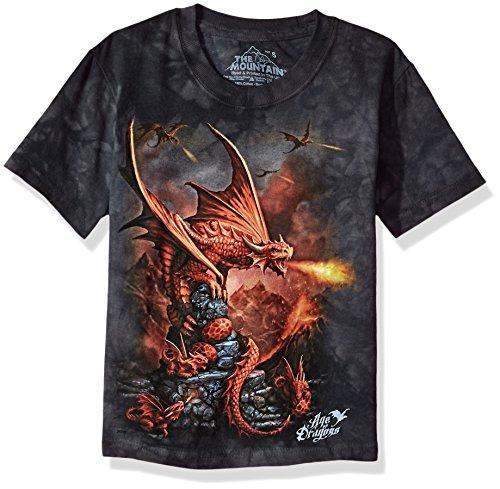 The Mountain Fire Dragon Child T-Shirt, Grey, ()