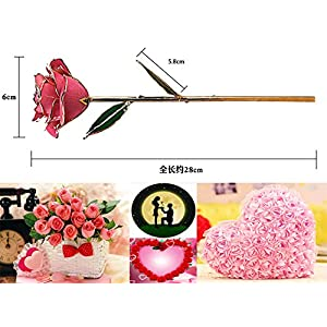 PUTIA Gold Rose 24k Gold Dipped Rose Everlasting Long Stem Real Rose Exquisite Holder, Unique Romantic Gift Valentine's Day Forever Rose, Anniversary, Mother's Day Birthday Gift 2