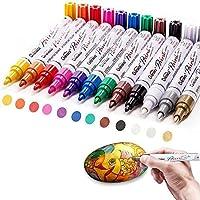 Paint Marker Pennen, Acrylstiften voor het schilderen van stenen, 12 kleuren watervaste pennen voor stenen, schilderen…