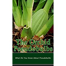 The Orchid Pseudobulbs: What Do You Know About Pseudobulbs