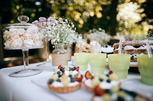 Wallmonkeys WM359505 Delicious Wedding Reception Candy Bar Dessert Table for a Wedding Outdoor Party Ombre Cake Wall Decal Peel and Stick Graphic (72 in W x 48 in H)