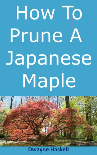 How To Prune A Japanese Maple - A Homeowner's (Pruning Japanese Maple Trees)