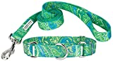 Country Brook Petz | Green Paisley Feather Weight Martingale Collar & Leash - Extra Small