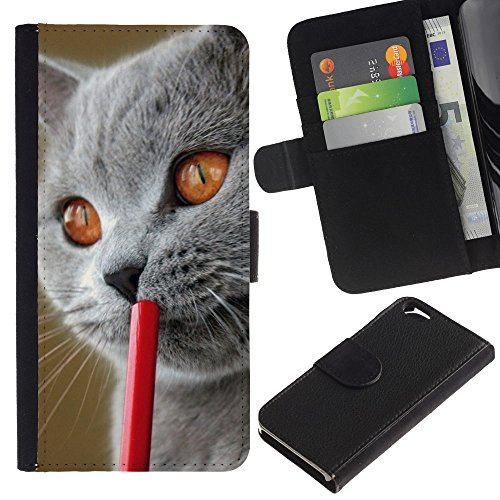 EuroCase - Apple Iphone 6 4.7 - blue British shorthair Siberian cat - Cuir PU Coverture Shell Armure Coque Coq Cas Etui Housse Case Cover