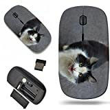 Luxlady Wireless Mouse Travel 2.4G Wireless Mice with USB Receiver, 1000 DPI for notebook, pc, laptop,mac design IMAGE ID: 34617840 domestic cat on a city street