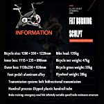 NXX-Cyclette-Casa-Ultra-Silenzioso-Esercizio-Pedale-Bici-Spinning-Attrezzature-per-Il-FitnessVolano-da-20-kg