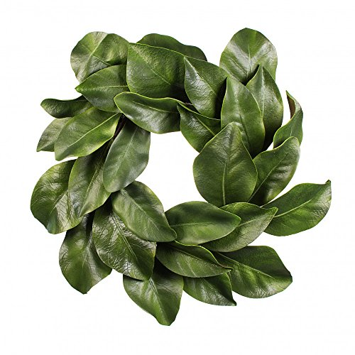 Christmas Quality Magnolia Leaf Grapevine Wreath 16'' by American Best