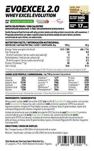 Whey Protein Isolate + Whey Protein Concentrate Evoexcel 2.0 de HSN Sports, Sin Gluten, Apto Vegetariano, Sabor Chocolate Galletas, 500 gr: Amazon.es: Salud ...