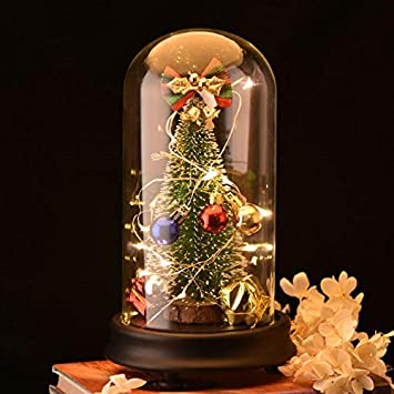Best Quality - Trees - Christmas Tree Decorations with LED Light Music Box  in Glass Dome - Amazon.com : Best Quality - Trees - Christmas Tree Decorations With