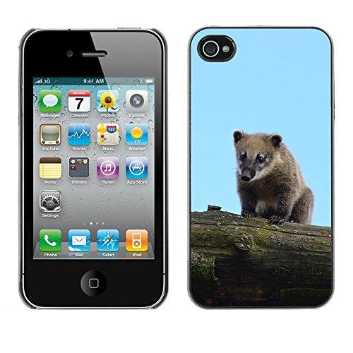 Bild Hart Handy Schwarz Schutz Case Cover Schale Etui // M00133914 Zoo Süße Tier // Apple iPhone 4 4S 4G