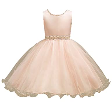 79be2aac9 ADHS Halloween All Saints' Day Thanksgiving New Year Dresses for  Girl(Champagne,3