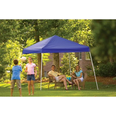 separation shoes 3c36e 23f0b ShelterLogic Pop-Up Canopy - 10ft. x 10ft., Open Top, Slant ...