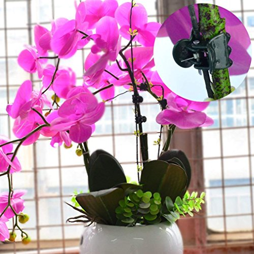baotongle 200 pcs Plant Clips, Orchid Clips Plant Orchid Support Clips Flower and Vine Clips for Supporting Stems Vines Grow Upright Dark Green by baotongle (Image #2)