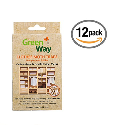 GreenWay Clothes Moth Traps (12 pack - 24 traps) | Pheromone Attractant, Ready To Use | Heavy Duty Glue, Safe, Non-Toxic with No Insecticides or Odor, Eco Friendly, Kid and Pet Safe by GreenWay