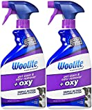 Best Pet Urine Removers - Woolite Pet Stain & Odor Remover Carpet Cleaner Review