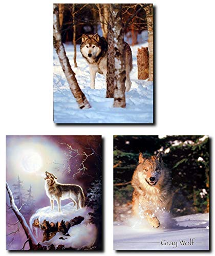 Howling Wolf Indian Warrior Wildlife Snow Animal Three Set Picture Wall Decor 8x10 Art Print Posters