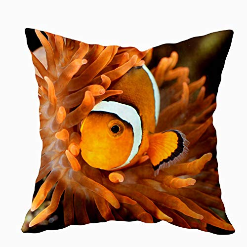 ROOLAYS Joy Pillow case, Throw Square Decorative Pillow Cover 18X18Inch, Cotton Cushion Covers Clownfish in Marine Aquarium Both Sides Printing Invisible Zipper Home Sofa Decor Pillowcase