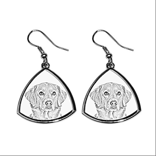 nova-scotia-duck-tolling-retriever-collection-of-earrings-with-images-of-purebred-dogs-collection-de
