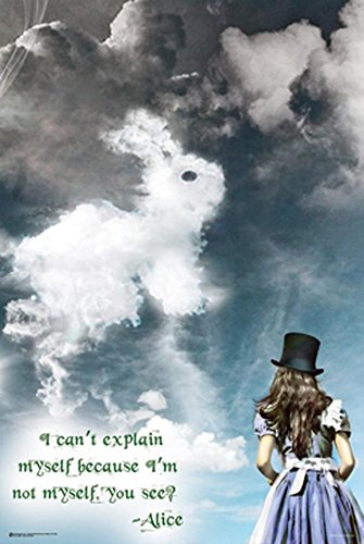 Alice's Illusions In Wonderland with Quote  36x24 Art Print