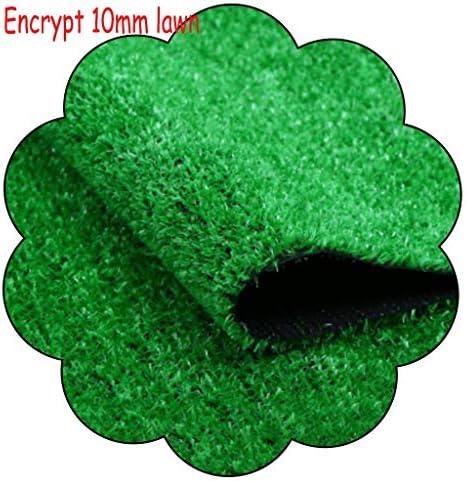 XEWNEG 庭の壁の装飾のために10ミリメートル屋外人工ターフ、防水暗号化されており、滑り止め、簡単にきれいな、緑の芝生フェイクペットマット、幅2メートル (Size : 2x5M)