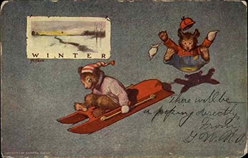 Winter bears sledding Seasons Original Vintage Postcard