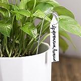 Mkono 100 Pcs Plastic Plant Labels Tags 4 Inch