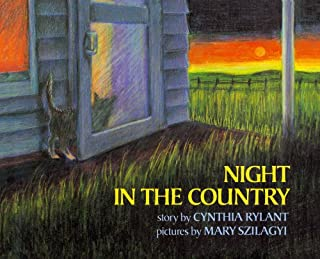 product image for Night in the Country