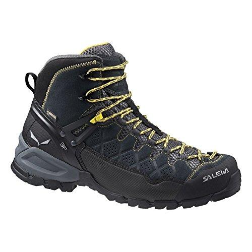 Men's Alp Trainer Mid GTX Boots Carbon / Ringlo 7.5 & Cap Bundle