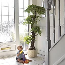 Premium Modern Beautiful Artificial Plants Trees, Large Japanese Fruticosa Tree, Handmade Using Real Bark & Synthetic Leaves, Indoor Plant - 165cm Tall.