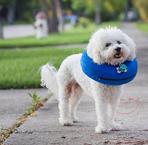 Hapa Protective Inflatable Collar for Dogs and Cats - Soft Pet Recovery Collar Does Not Block Vision E-Collar (S: 22X23CM,Neck diameter: 4-5cm, Neck circumference: - Procollar Inflatable